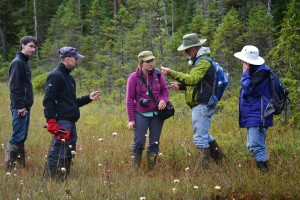 Rich,  Dan,  Rachel, Lem, and Anita confer on the sedge ID